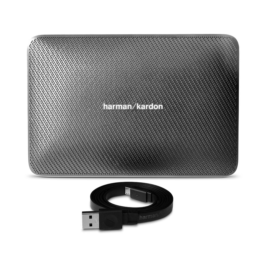 Harman/Kardon Esquire 2 Gray
